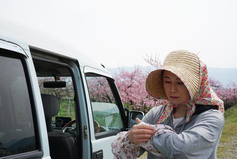 かわしま果樹園 桃